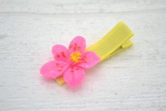 Collection Eté fleur bonbon centre jaune